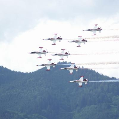 2009 Airpower 83
